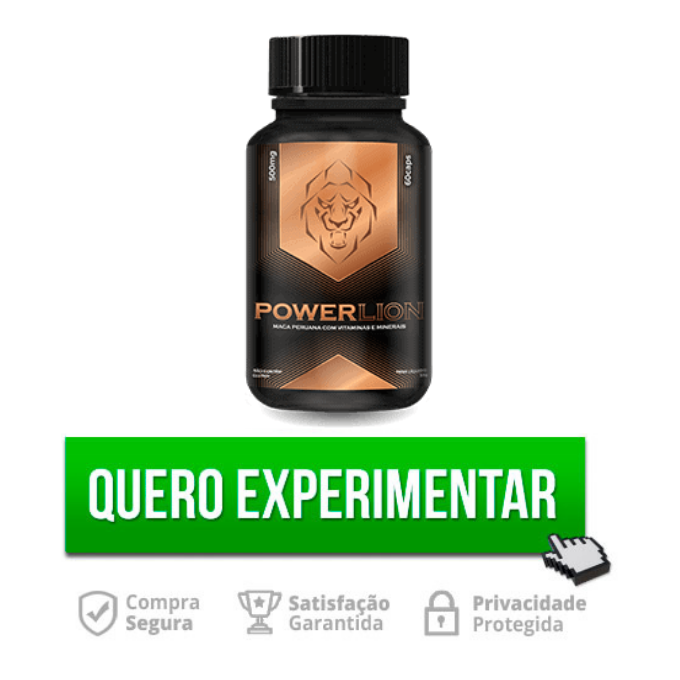 power-lion-experimente