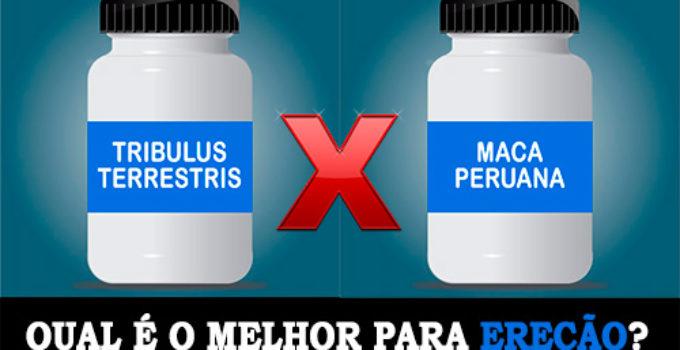 tribulus-maca-erecao